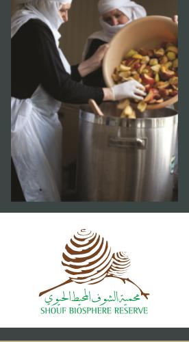 Rural Development flyer - Cover