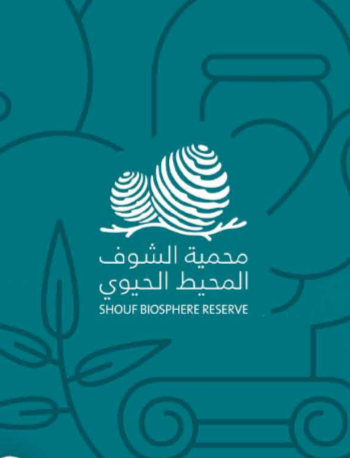shoufcedar.org