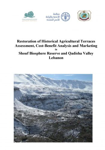 Old terraces cost analyses - Shouf and Qadisha-Draft_Page_01